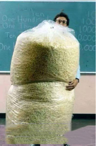 Big Bag of Popcorn Teacher Guy