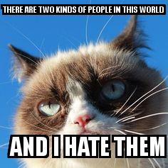 Angry Cat with the caption THERE ARE TWO KINDS OF PEOPLE IN THIS WORLD   AND I HATE THEM