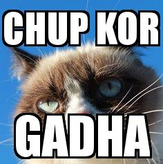 Angry Cat with the caption Chup Kor Gadha