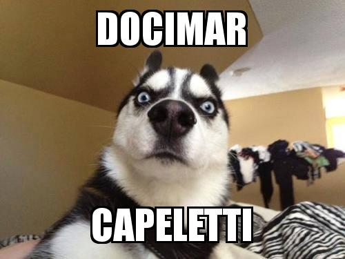 What the dog with the caption Docimar Capeletti