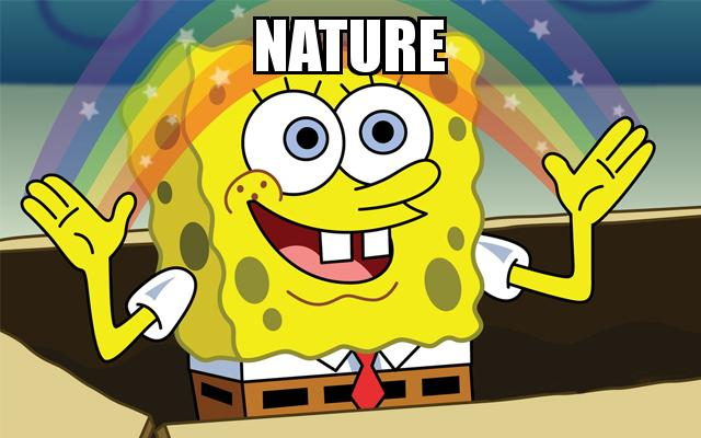 Spongebob Imagination Rainbow with the caption Nature